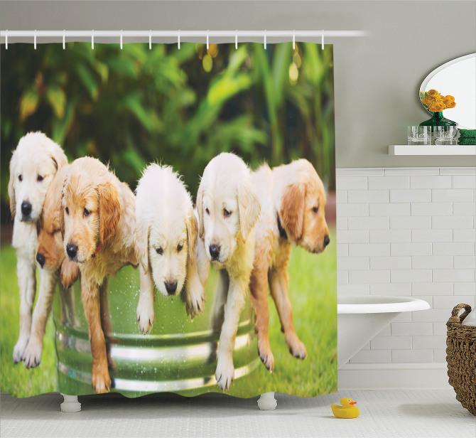 Sevimli Islak Köpekler Temalı Duş Perdesi Yeşil