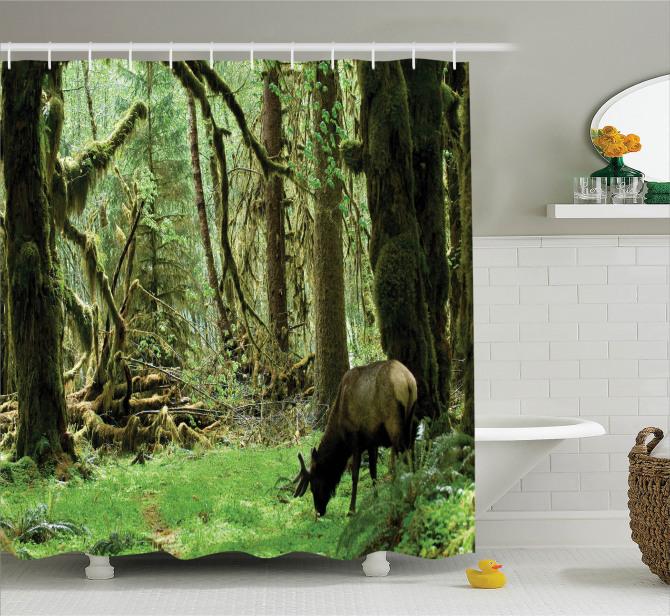 Yaban Hayatı Temalı Duş Perdesi Doğa Hayvan Ağaç