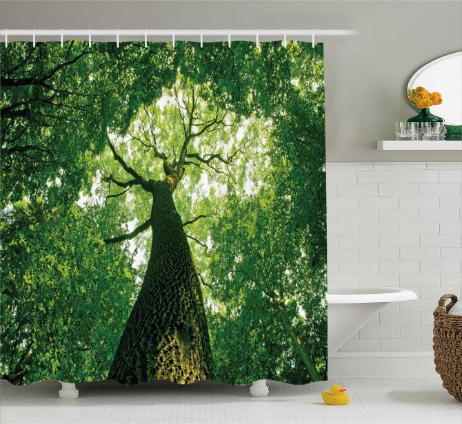 Yeşil Duş Perdesi Yaşlı Ağaç Gölgesinde Huzur Temalı