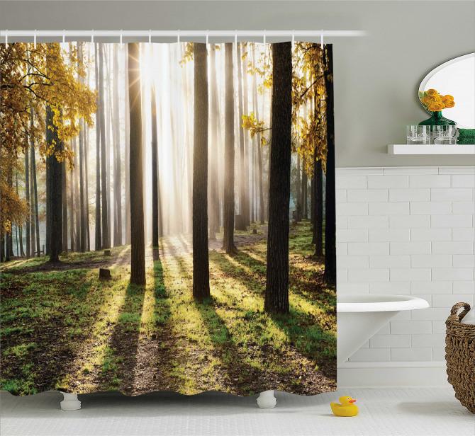 Ormanda Gün Doğumu Manzaralı Duş Perdesi Sonbahar