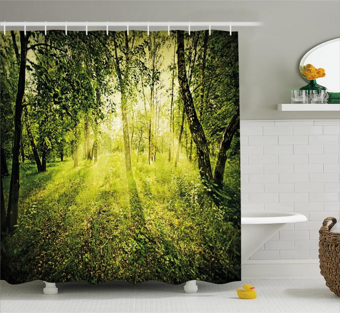 Ormanda Gün Doğumu Temalı Duş Perdesi Güneş Doğa