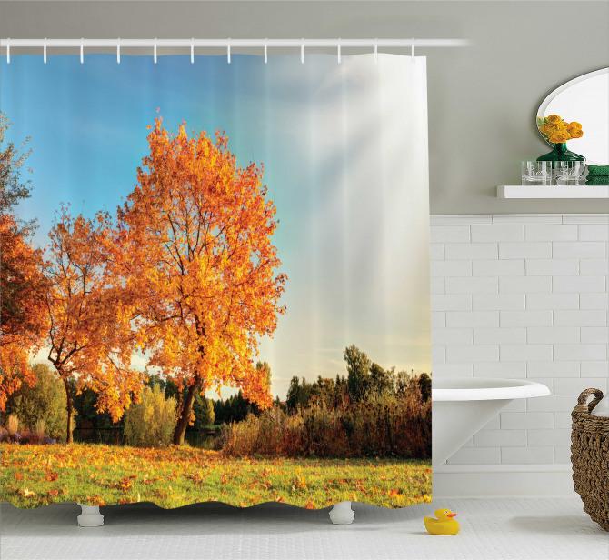Sonbahar Temalı Duş Perdesi Ağaç Turuncu Yapraklar