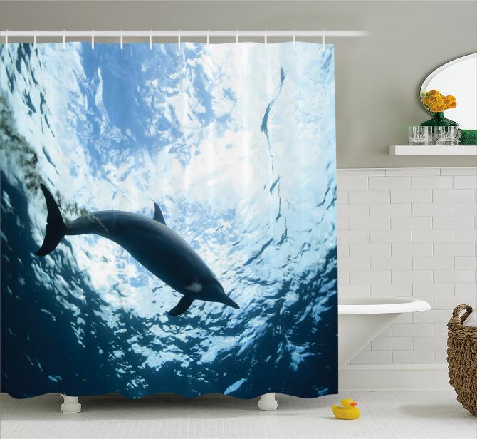 Okyanus Hayatı Temalı Duş Perdesi Yunus Mavi