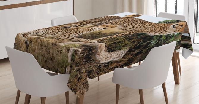 Çita Temalı Masa Örtüsü Kahverengi Vahşi Yaşam Şık