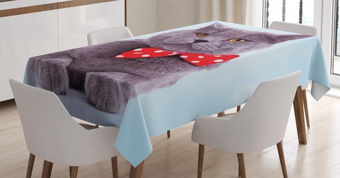 Papyonlu Kedi Desenli Masa Örtüsü Gri Mavi Kırmızı