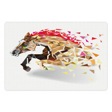 Abstract Art Wild Horse Pet Mat