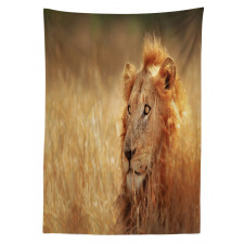 Male Lion Grass Field Tablecloth