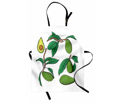 Avokado Mutfak Önlüğü Dalında Alınmamış Sağlıklı Meyve Dizayn