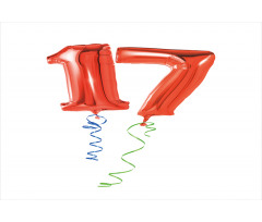 17 Party Red Balloons Aluminum Water Bottle