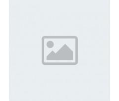 Abstract Autumn Flora Glass Mug