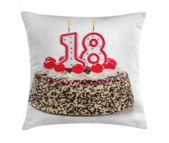 18 Party Pillow Cover