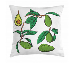 Avokado Minder Kılıfı Dalında Alınmamış Sağlıklı Meyve Dizayn