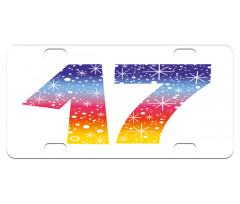 17 Party Mini License Plate