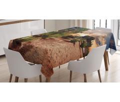 Masa Örtüsü Palmiye ve Kaktüs