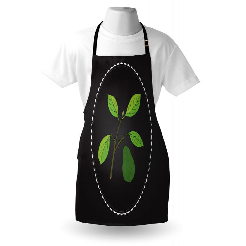 Avokado Mutfak Önlüğü Dalından Koparılmamış Sağlıklı Meyve Model