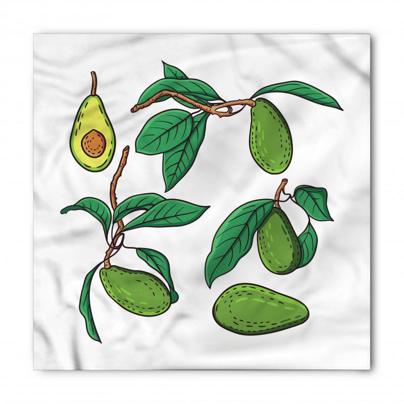 Avokado Bandana Dalında Alınmamış Sağlıklı Meyve Dizayn
