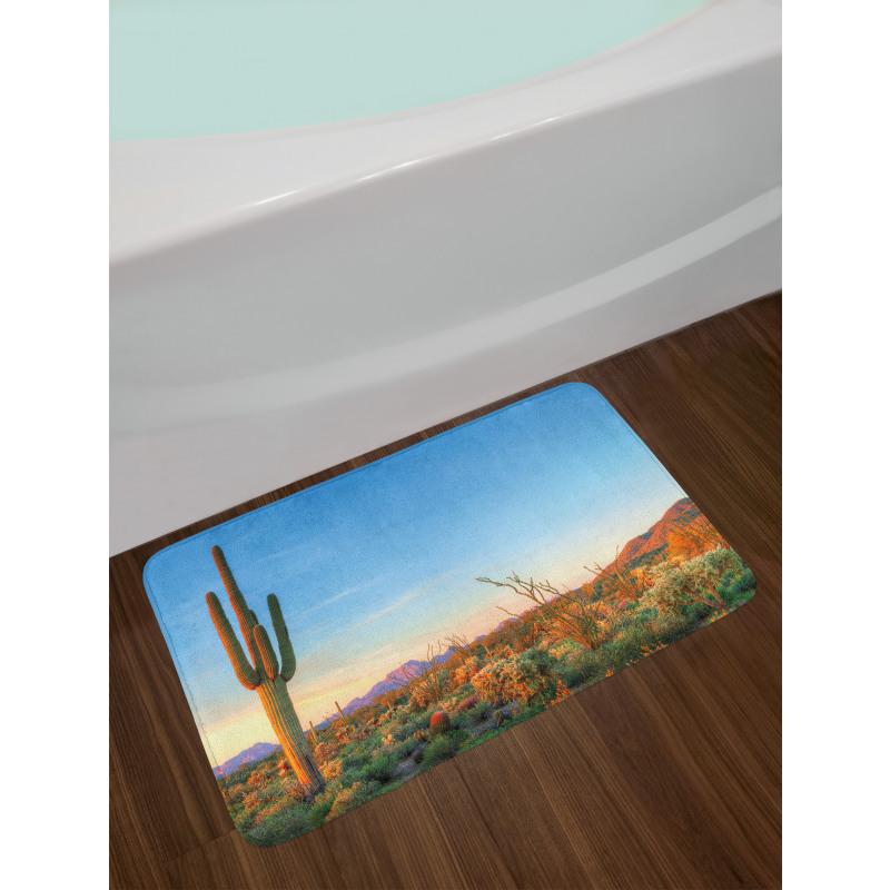 Sun in Desert Cactus Bath Mat