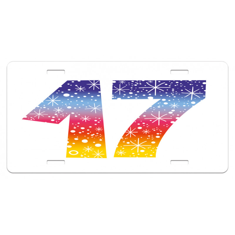 17 Party License Plate