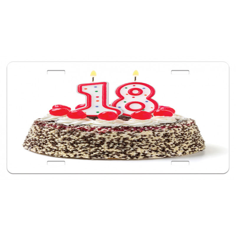 18 Party License Plate