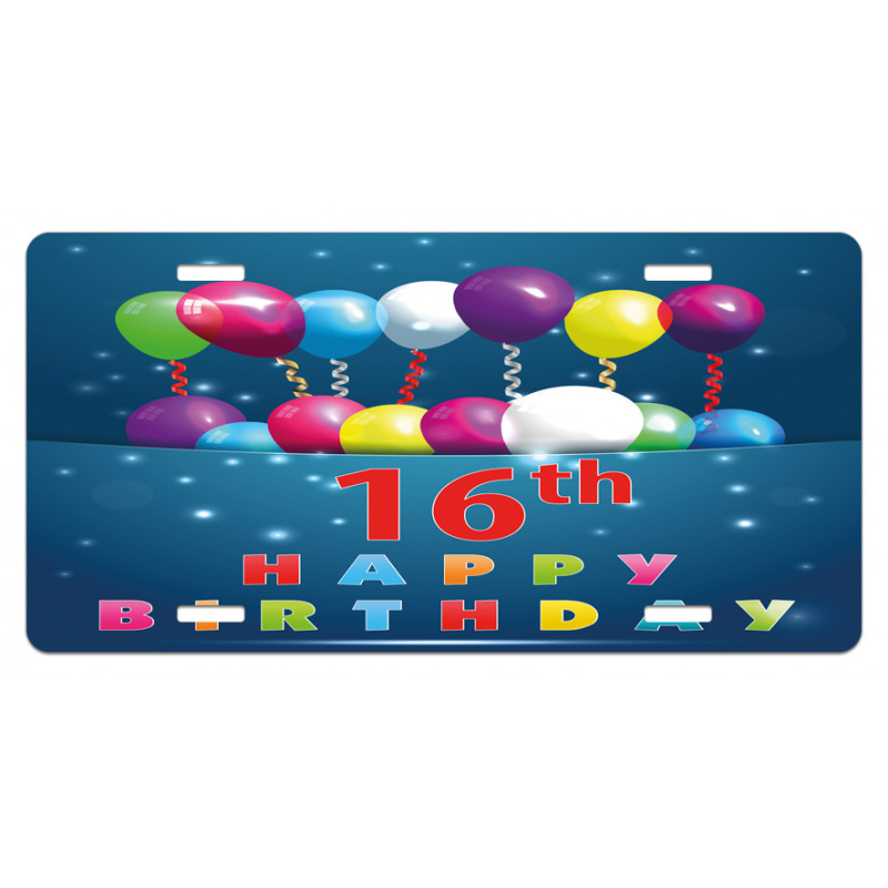 16 Party License Plate
