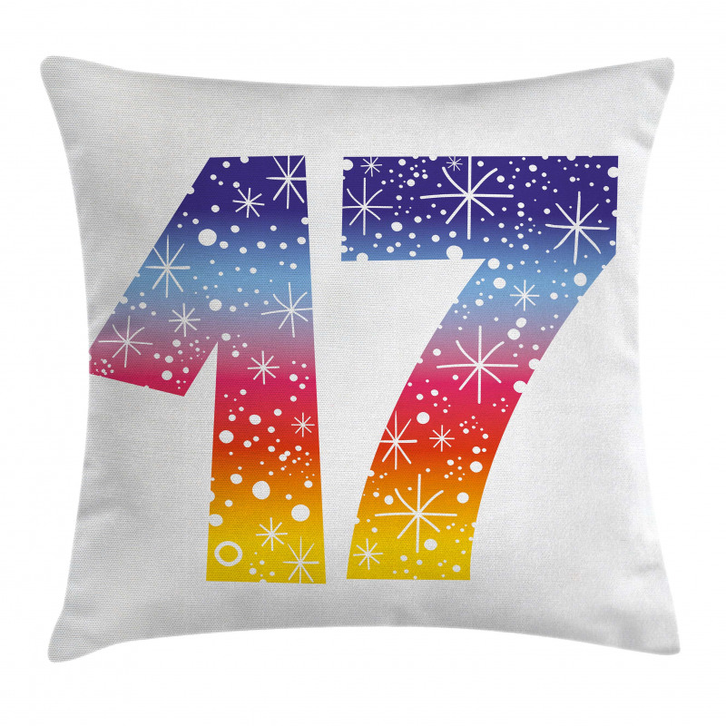 17 Party Pillow Cover