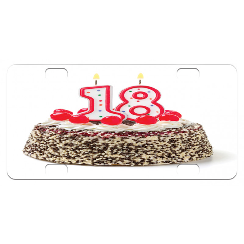 18 Party Mini License Plate
