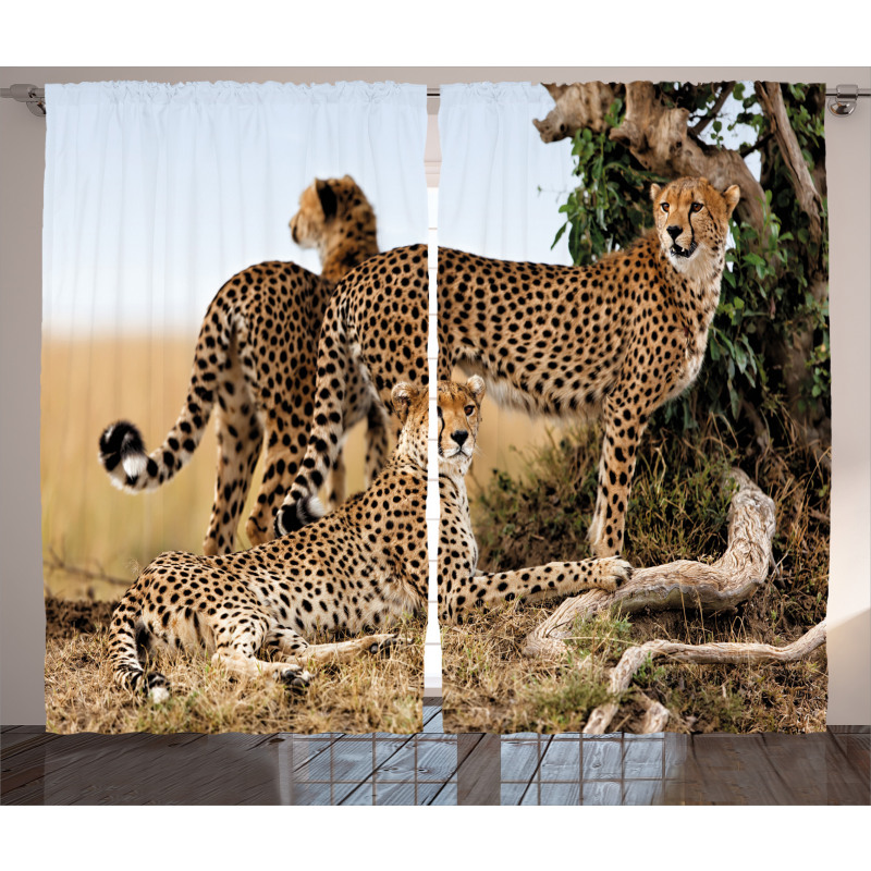 Safari Animal Cheetahs Curtain