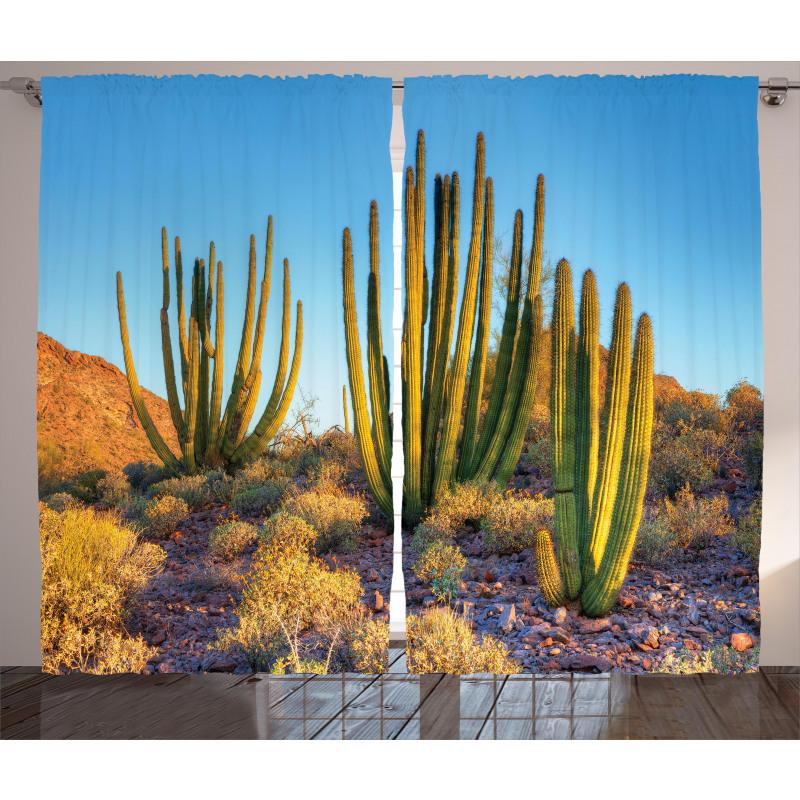 Mountain Cactus Photo Curtain