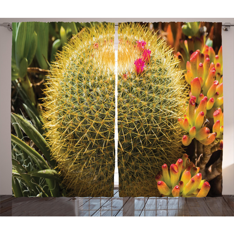 Cactus Plant with Spikes Curtain