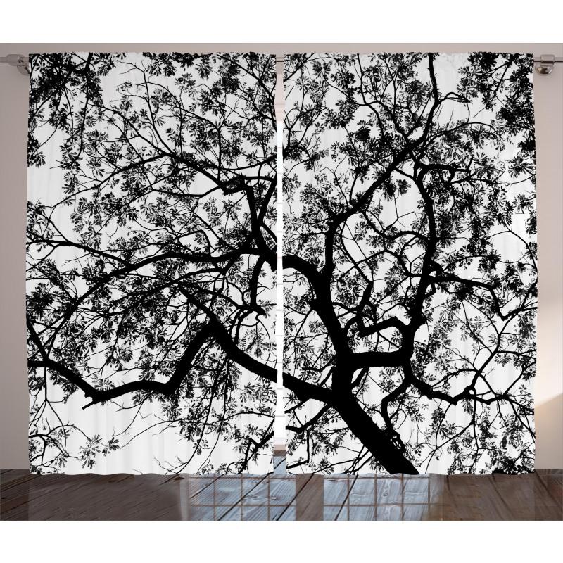 Spooky Black Tree Branch Curtain