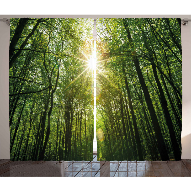 Summer Trees Upward View Curtain