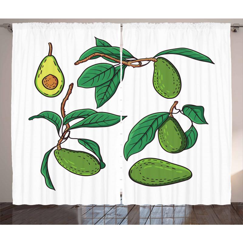Avokado Perde Dalında Alınmamış Sağlıklı Meyve Dizayn