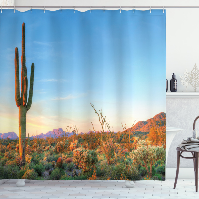 Sun in Desert Cactus Shower Curtain