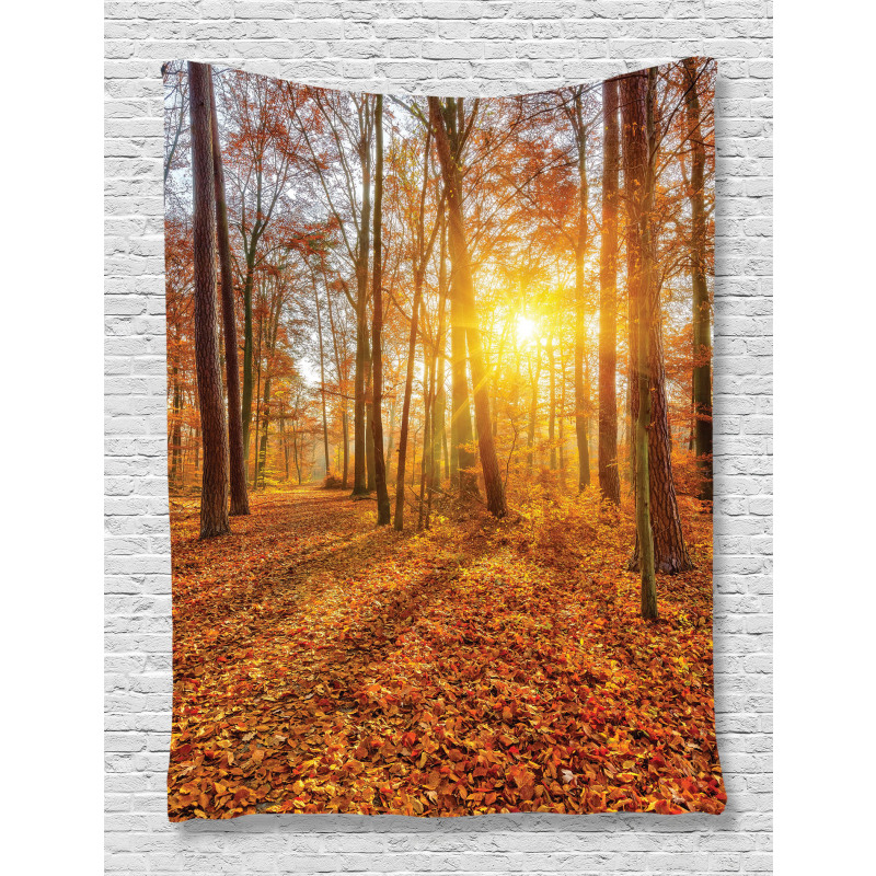 Foggy Sunset Sunbeams Tapestry