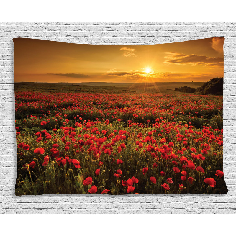 Sunset Meadow Farmland Wide Tapestry